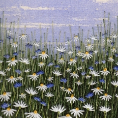 Daisy & Cornflower Meadow
