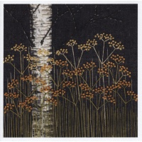jb29_fennel__silver_birch