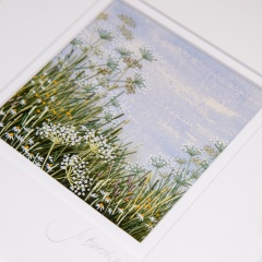 cow-parsley-meadow-cpm15-01