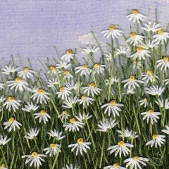 Daisy Meadow. Hand embroidery on a painted background