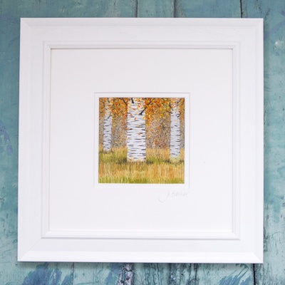 autumn-silver-birches--jo-butcher-asb01-01