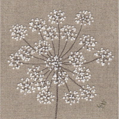 Cow Parsley. Hand Embroidery